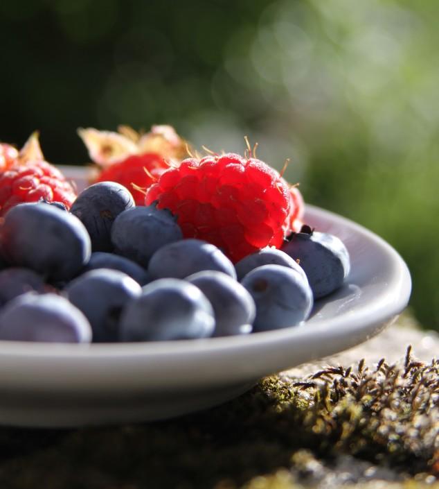 Alimentazione in stati fisiopatologici