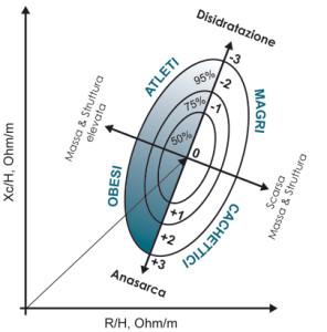 analisi della composizione corporea tramite bioimpedenzimetro akern bia 101